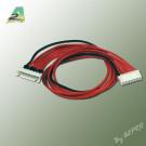 Rallonge 30cm AWG22 JST-XH 6S